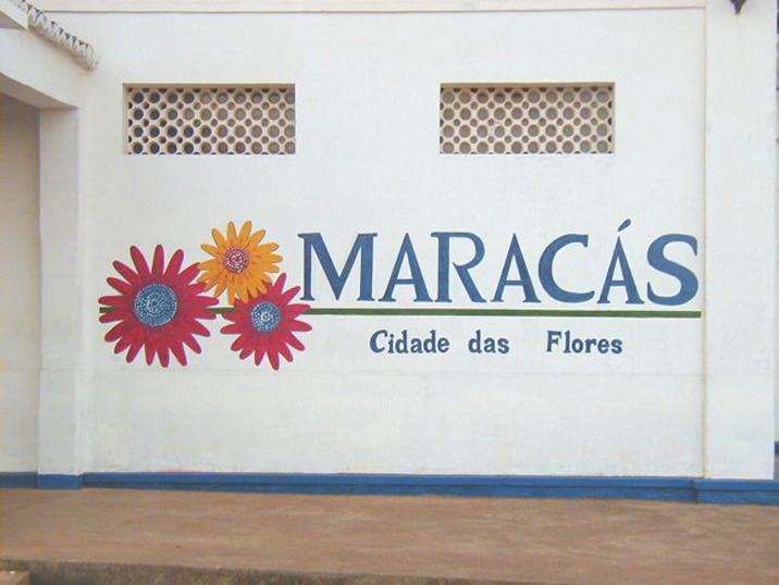 maracas1.jpg